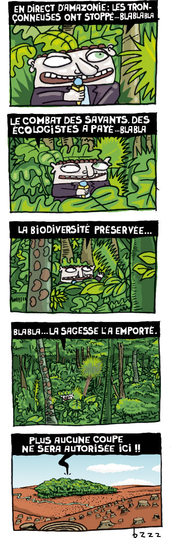 Jungle à la découpe